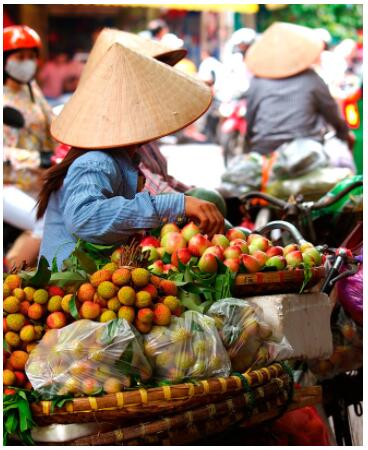 Friendly Vietnam 2