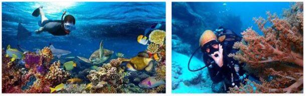 Beaches and Diving on Zanzibar