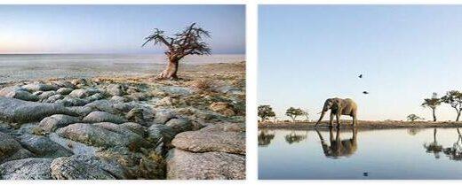 Travel to Botswana