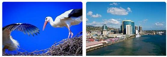 Information about Tobago